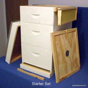 Beehive Starter Set by GreenBeehives Beekeeping Equipment