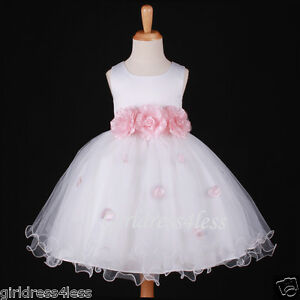 WHITE-BABY-PINK-PRINCESS-FAIRY-FLOWER-GIRL-DRESS-6M-12M-18M-2-2T-4-4T-5-6-7-8-10