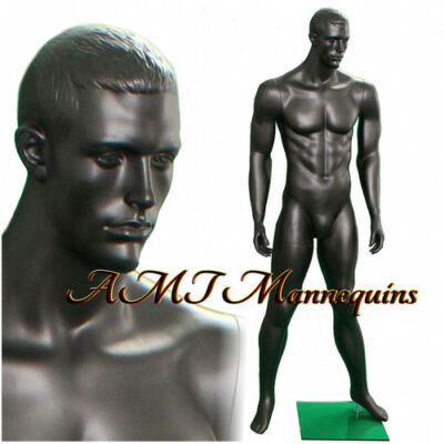 Male Display Muscular Mannequin Blackchacoal Grayfull Body Manikin -ma12-1