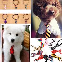 # 065 - Cravate pour chiot ou chien