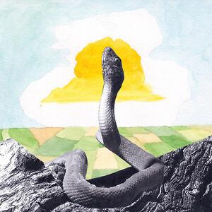 WOODS-Bend-Beyond-2012-US-vinyl-LP-download-SEALED-NEW