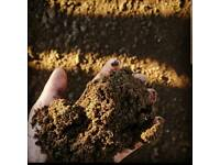 Quality Screened Topsoil BS3882 Loose loads