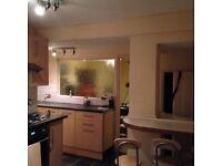 Lovely large 2 bedroom family home to let in Estcourt street Hull