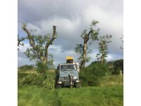 Tree services available fully insured