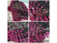 Brand New Lace Scarves