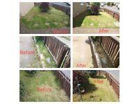 Grass Cutting / Garden Maintenance