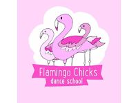 Volunteer Dance Assistants for Flamingo Chicks