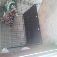 very big dog cage with 20.7kg dog food