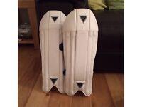 Salix junior wicket keeping pads