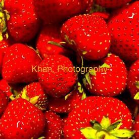 Vermillion strawberries