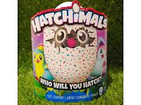 Hatchimals Teal Penguala and Purple draggles Hatching Egg, sold out ,xmas toy, Christmas gift