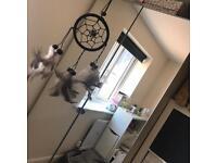 Ikea mirror fronted double wardrobe