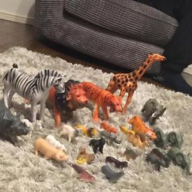 Assorted zoo and farm animals