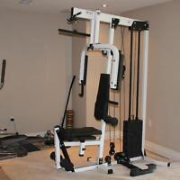 Northern Lights Home Gym Buy Or Sell Exercise Equipment