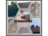 Roof repairs,cleaning,de-mossing,slates,tiles,coatings,gutter services & upvc cladding.