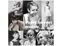 Short haircut models wanted ,ladies and gents ! Fridays 9am or 1pm