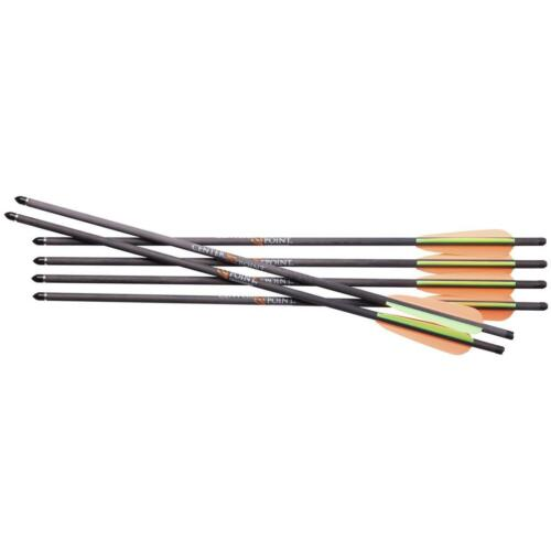 """CenterPoint Carbon Bolts 20"""" 6 Pack"""