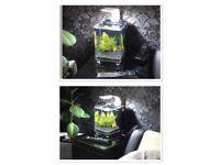 Mini aquarium nano pico 8L betta fish tank led pump heater
