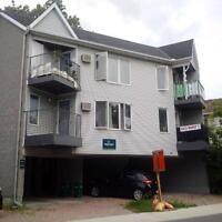 *Modern, Renovated 2 bedroom apt near Parkdale/Hintonburg