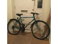 Green Raleigh Ascender