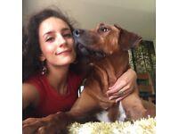 Available dog walker/pet sitter - south west London