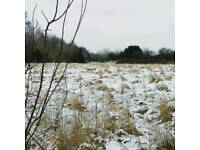Paddock land grazing camping other use