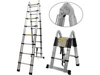 wanted telescopic /combination ladder