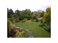 Cj's Gardening services