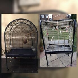 2 big bird cages