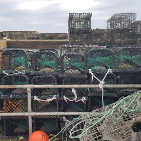 40 Lobster fishing creels