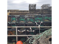40 Lobster fishing creels