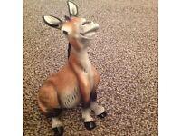 Cheval donkey...