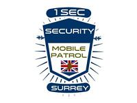 Security business partner wanted