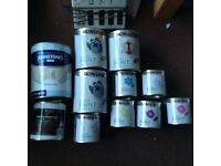 Job Lot of RONSEAL GARDEN PAINTS