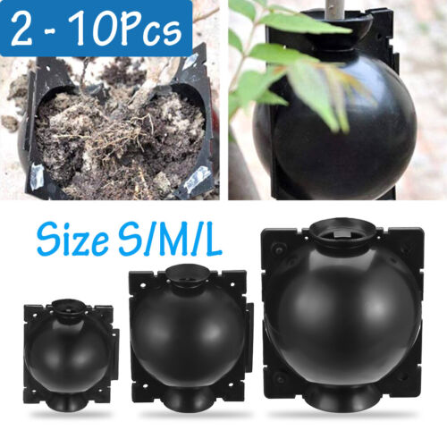Plant High Pressure Graft Grafting Rooting Growing Device Propagation Ball Box