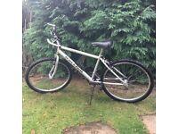 Raleigh Max mountain bike. Unisex