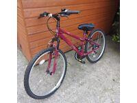 Ladies 14inch apollo twilight bike