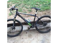Pro board an mountain bike