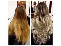Professional Hairdresser/ Stylist