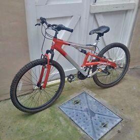 Barracuda Bicycle