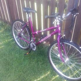 Ladies / Girls Bike