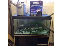 200 litre Fish Tank and stand with All Accessories Marine / Tropical / Cold Water