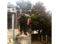 City & Guilds Fully Qualified Tree Surgeon