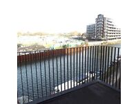 ****1 BEDROOM RIVERSIDE APARTMENT DSS/UC ACCEPTED****