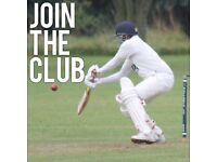 Play cricket? Join the club