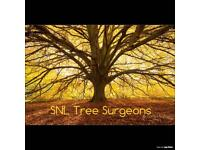 SNL TREE SURGEONS