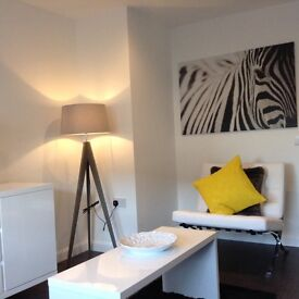 Short Term Rentals- Aberdeen City Centre- 1 & 2 bedroom apartments from £400 per week