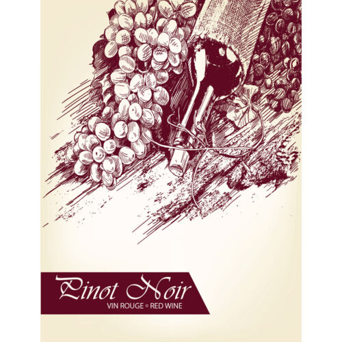 Pinot Noir Adhesive Wine Bottle Labels - 30-Pack