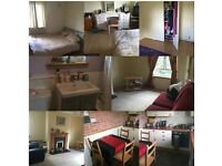 Spacious Double room flat share £300
