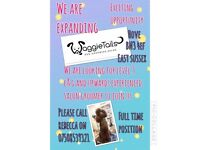 Professional dog grooming stylist required